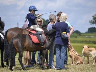 Cavalieri e genitori in concorso