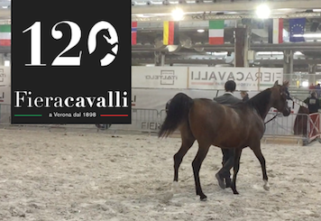 FieraCavalli Verona 2018 - 120ª edizione