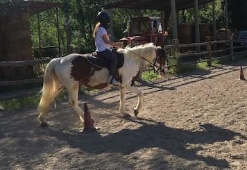Amazzone sul pony