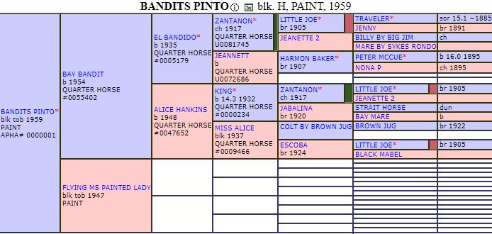 Documento APHA di Badis Pinto