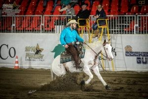 Reining col Paint Horse