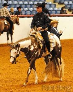 Western Pleasure col Paint Horse